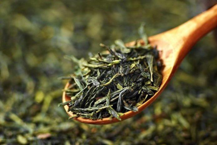 zielona herbata na cellulit